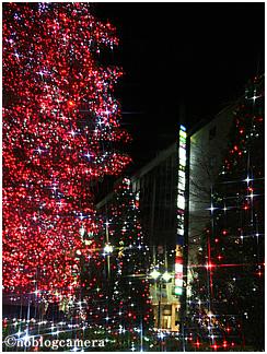 SHISEIDO TREE