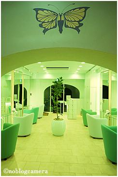 feuille(フィーユ)Main room(メインルーム)10