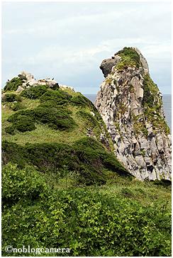 猿岩(全容)