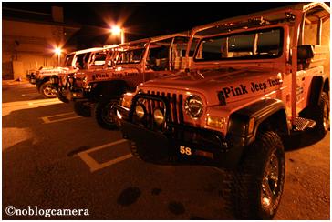 ピンクジープ・ツアー(Pink Jeep Tour)